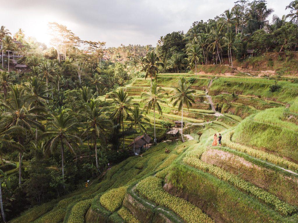 Terrazas de arros Tegallaland en Ubud Bali