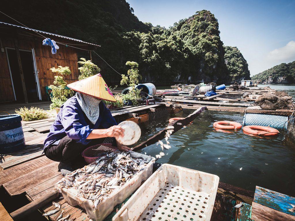 pescadores de la aldea flotante en vietnam