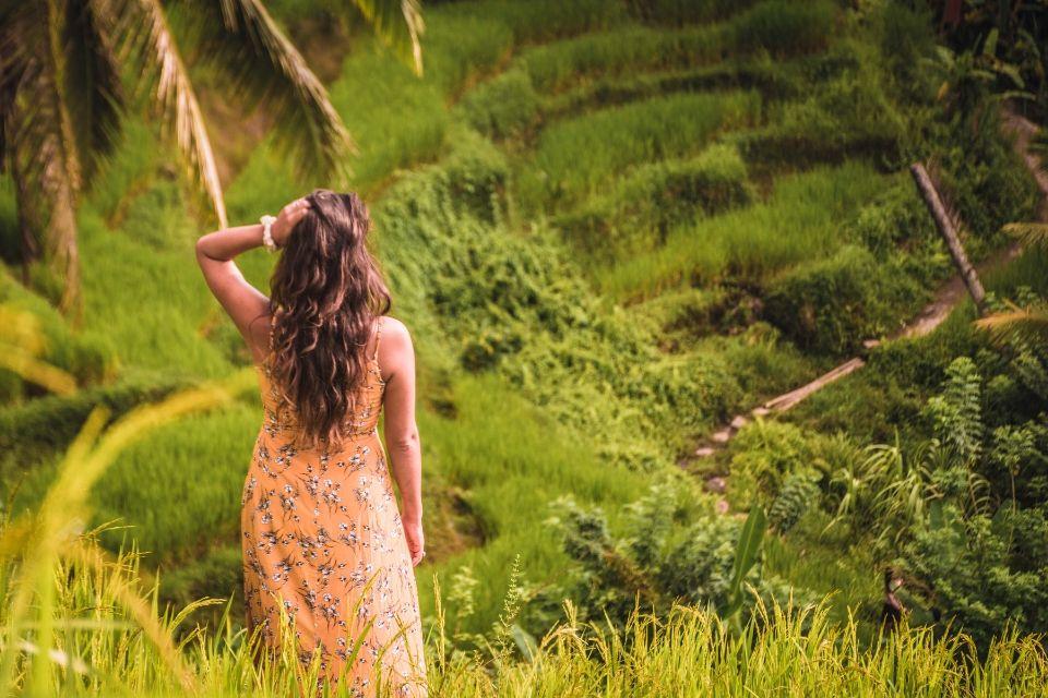 arrozales en Ubud bali